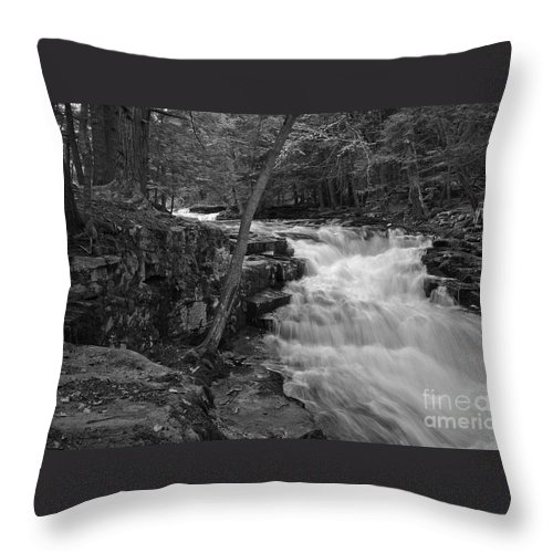 Waterfall Throw Pillow featuring the photograph The Falls by David Rucker