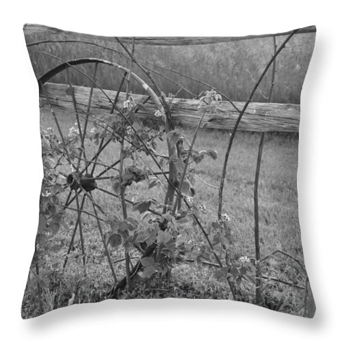 Wagon Wheel Throw Pillow featuring the photograph The Farm by Denise Gleason