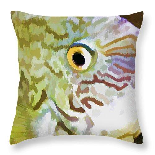 Fish Throw Pillow featuring the photograph The Fish by Deborah Benoit