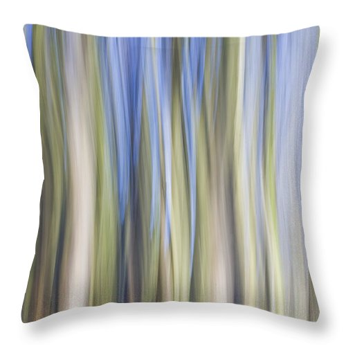Tree Throw Pillow featuring the photograph The Flow Of Light Iv by Maria Ismanah Schulze-Vorberg