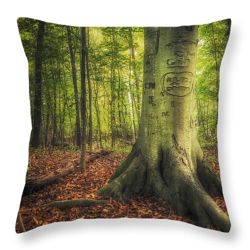 Tree Throw Pillow featuring the photograph The Giving Tree by Scott Norris