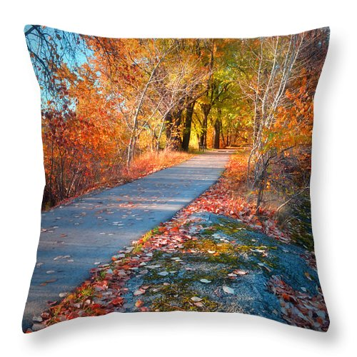 Autun Throw Pillow featuring the photograph The Glowing by Tara Turner