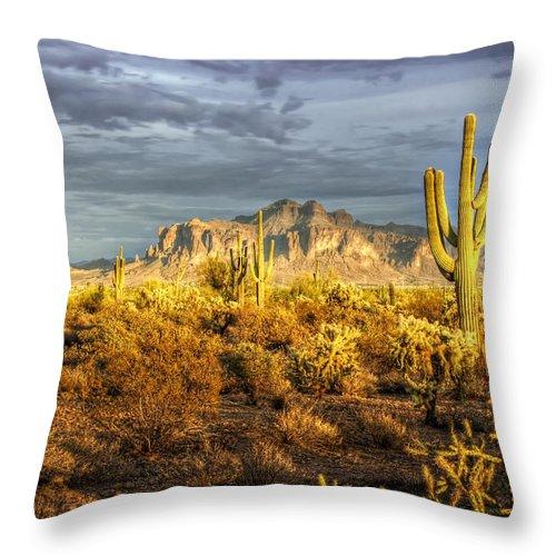 Sunset Throw Pillow featuring the photograph The Golden Glow by Saija Lehtonen
