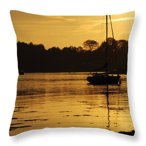 The Golden Hour Throw Pillow featuring the photograph The Golden Hour by Wendy Wilton
