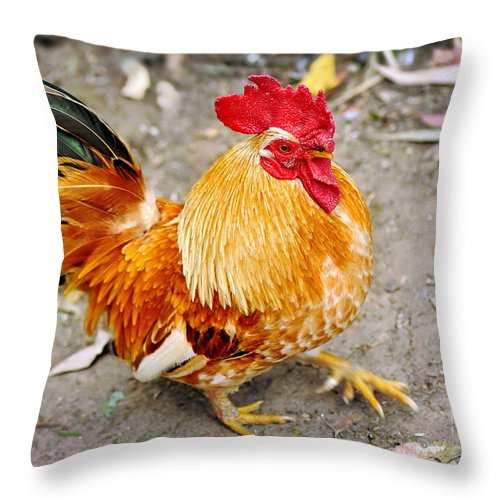 Photography Throw Pillow featuring the photograph The Golden Rooster by Kaye Menner