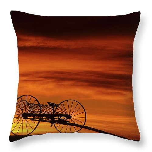Canada Throw Pillow featuring the photograph The Good Old Days by Bob Christopher