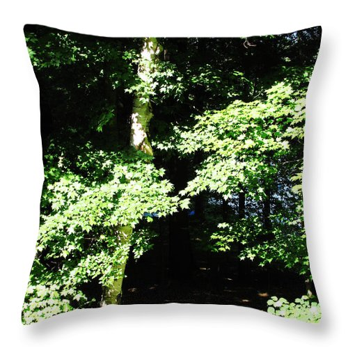 Leaves Throw Pillow featuring the photograph The Grotto by Nancie Johnson