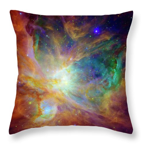 Universe Throw Pillow featuring the photograph The Hatchery by Jennifer Rondinelli Reilly - Fine Art Photography