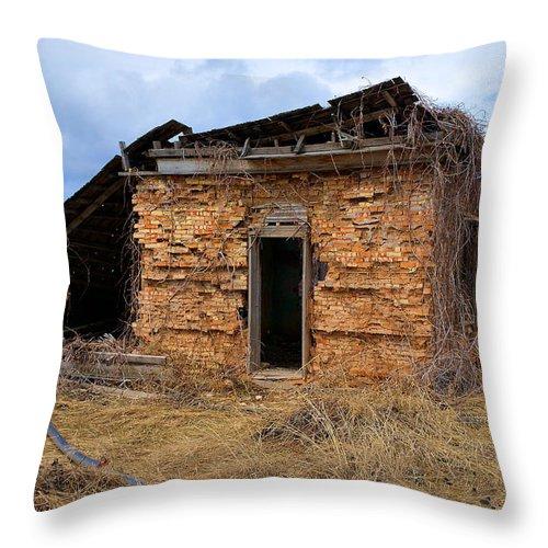 Smithfield Throw Pillow featuring the photograph The Homestead 2 by Richard J Cassato