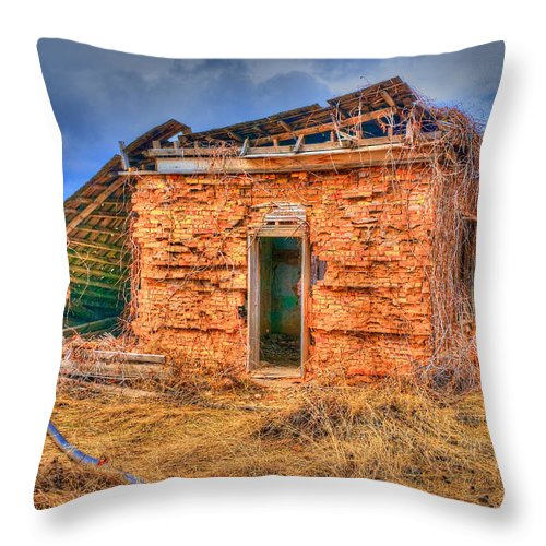 Smithfield Throw Pillow featuring the photograph The Homestead 3 by Richard J Cassato