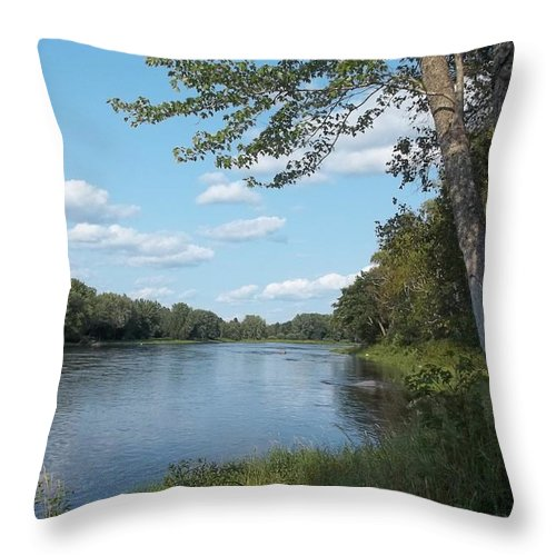 Rivers Throw Pillow featuring the photograph The Intervale On The Piscataquis River by Georgia Hamlin