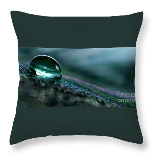 Feather Throw Pillow featuring the photograph The Journey by Krissy Katsimbras