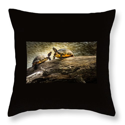 Lake Turtles Throw Pillow featuring the photograph The Log Waltz by Karen Wiles