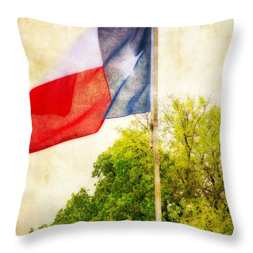 Flag Throw Pillow featuring the photograph The Lone Star Flag by Joan Bertucci