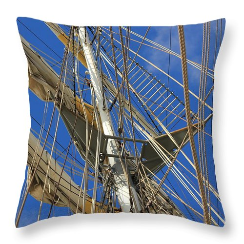 Eye Throw Pillow featuring the photograph The Lookout by Four Hands Art