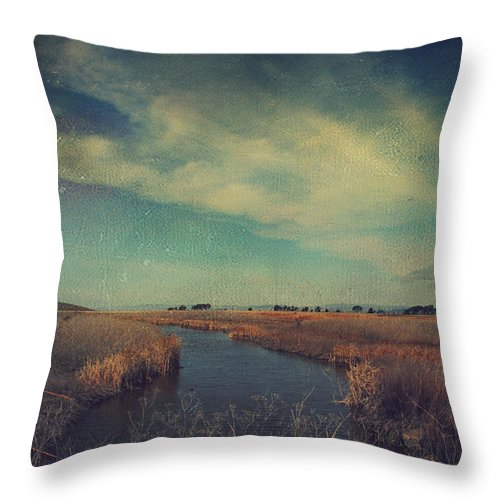 Landscapes Throw Pillow featuring the photograph The Love We Give by Laurie Search