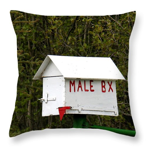 Mail Throw Pillow featuring the photograph The Male Box by Art Block Collections