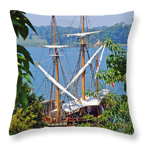 The Maryland Dove Throw Pillow featuring the photograph The Maryland Dove by Thomas R Fletcher