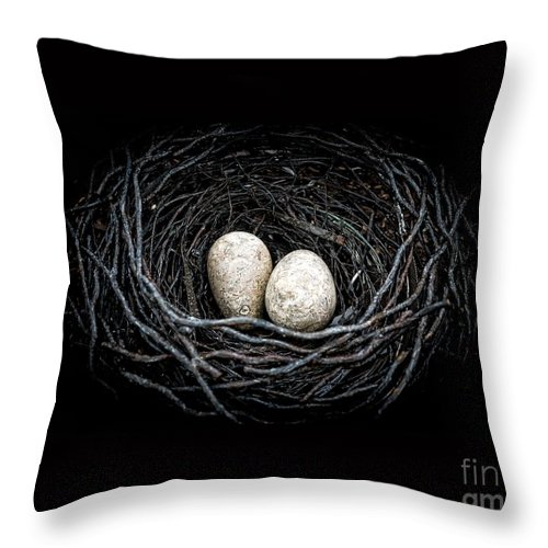 The Nest Throw Pillow featuring the photograph The Nest by Edward Fielding