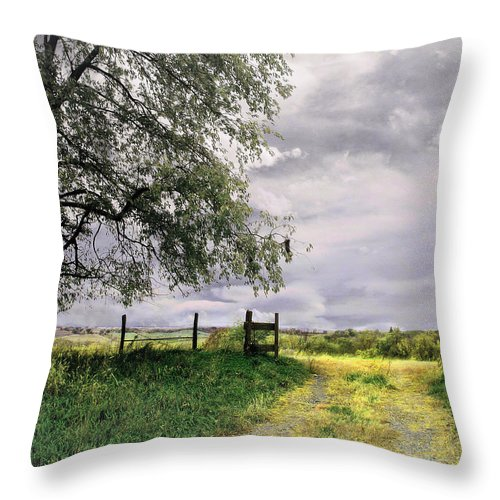 Farm Throw Pillow featuring the photograph The North Pasture by John Anderson