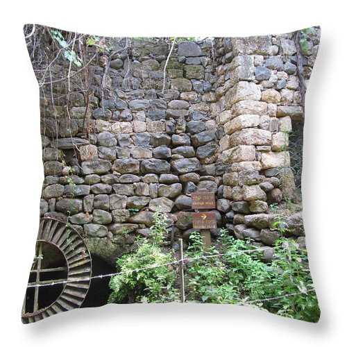 Old Flour Mill At Tel Dan Throw Pillow featuring the photograph The Old Flour Mill At Tel Dan by Esther Newman-Cohen