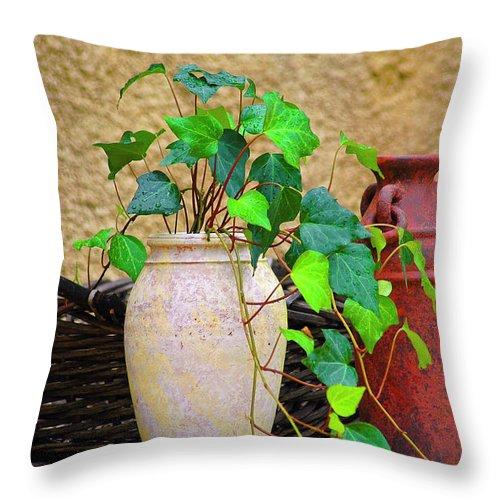 Vase Throw Pillow featuring the photograph The Old Times by Carolyn Marshall