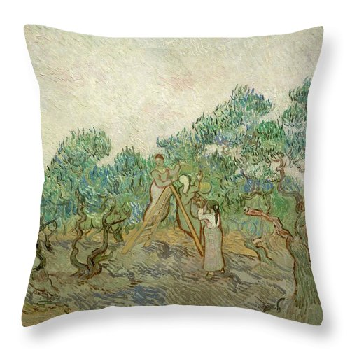 1889 Throw Pillow featuring the painting The Olive Orchard by Vincent van Gogh