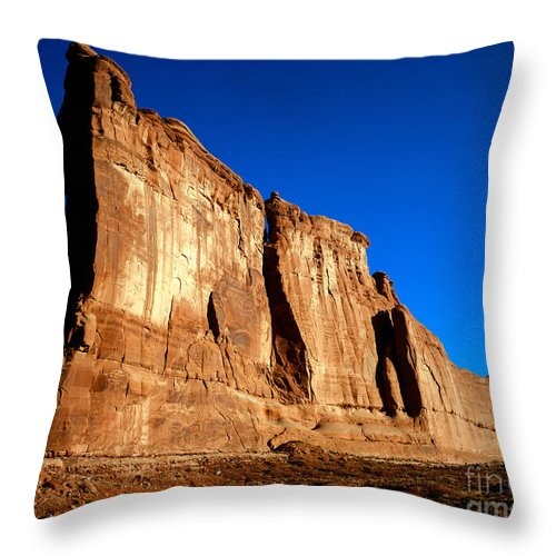 Arches National Park Throw Pillow featuring the photograph The Organ by Tracy Knauer