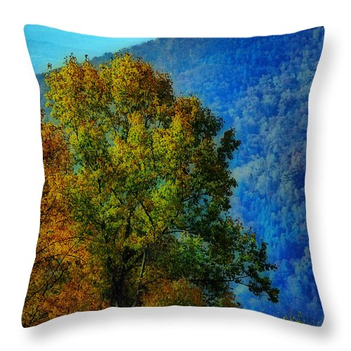 Scenic Tours Throw Pillow featuring the photograph The Original Frontier by Skip Willits