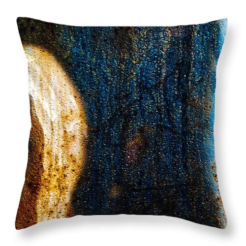Abstract Throw Pillow featuring the photograph The Other Half by Bob Orsillo