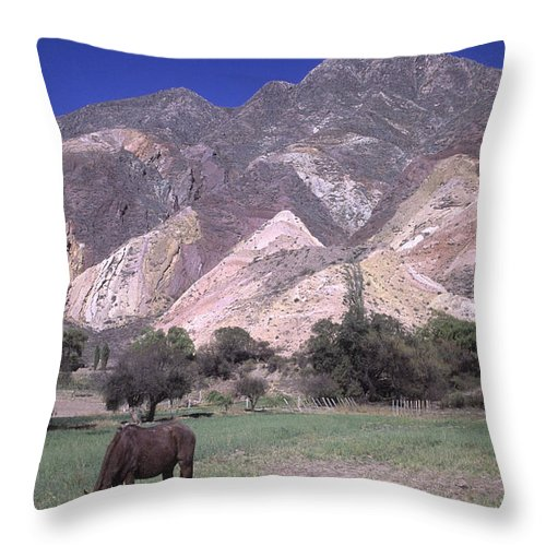 Argentina Throw Pillow featuring the photograph The Painters Palette Jujuy Argentina by James Brunker