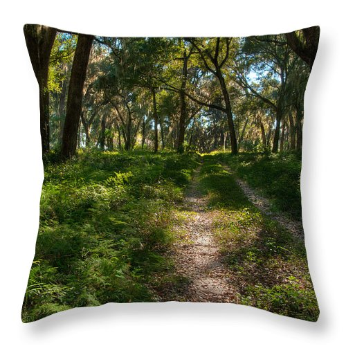 Paths Throw Pillow featuring the photograph The Path by DeWayne Beard