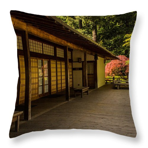 Patio Throw Pillow featuring the photograph The Patio by Calazone's Flics