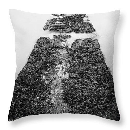 East Coast Throw Pillow featuring the photograph The Pier by John Farnan