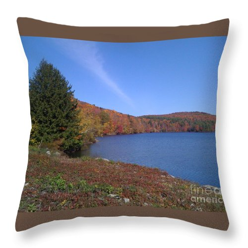 Lake Throw Pillow featuring the photograph The Resevoir by Nancie Johnson