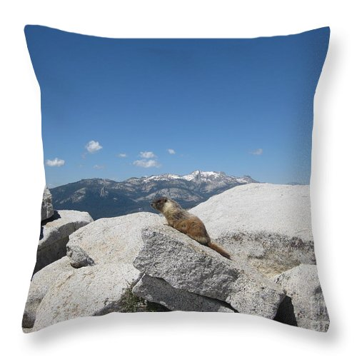 Half Dome Throw Pillow featuring the photograph The Resident of Half Dome by AC Hamilton