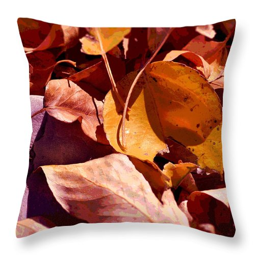 Autumn Leaves Throw Pillow featuring the photograph The Resting Place by Lisa Holland-Gillem