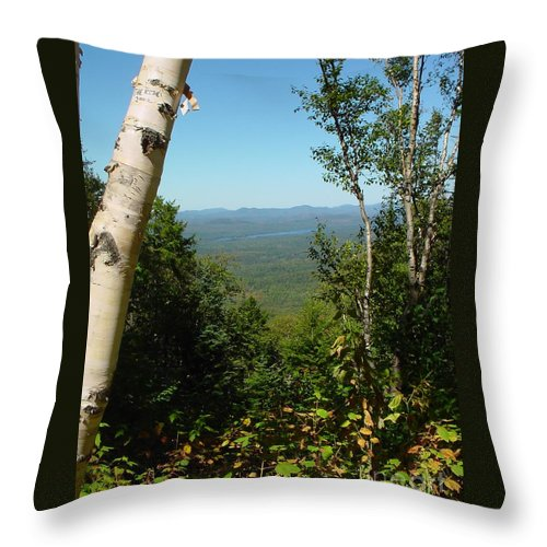 Trees Throw Pillow featuring the photograph The Ride by Nancie Johnson