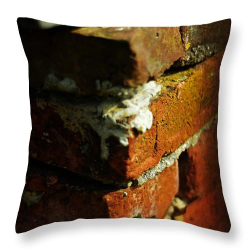 Ivy Throw Pillow featuring the photograph The Rising by Rebecca Sherman