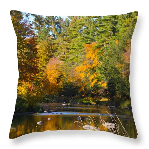 Amco Park Throw Pillow featuring the photograph The River Flows by Tiffany Erdman