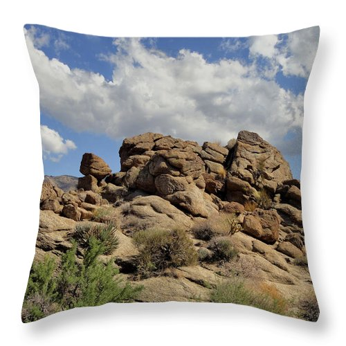 Palms To Pines Highway Throw Pillow featuring the photograph The Rock Garden by Michael Pickett