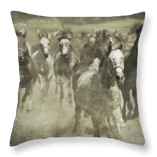 Horse Throw Pillow featuring the photograph The Run For Freedom by Angel Ciesniarska