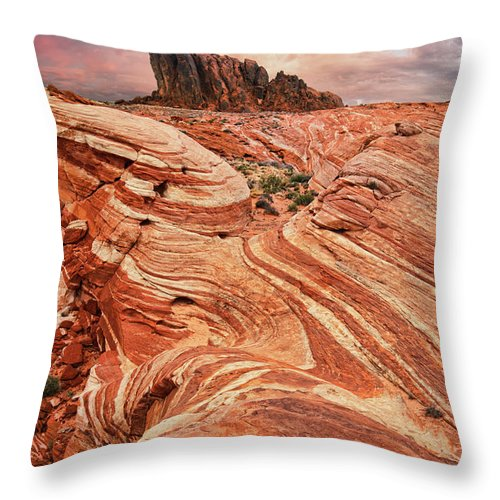 Scenics Throw Pillow featuring the photograph The Sand Crawler by Lee Sie Photography
