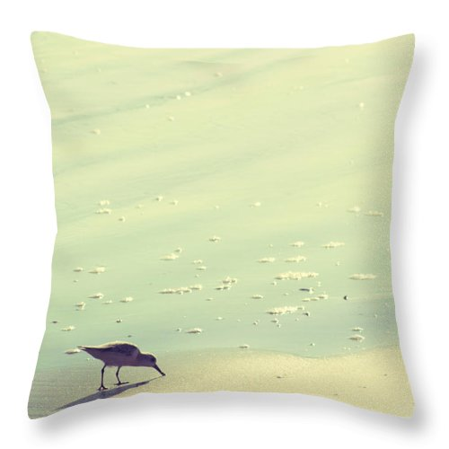 Beach Throw Pillow featuring the photograph The Sandpiper by Amy Tyler