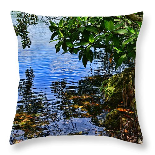 Nature Throw Pillow featuring the photograph The Serenity Of Mind by Olga Hamilton