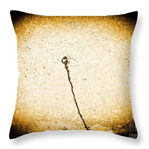 Abstract Throw Pillow featuring the photograph The Shooting Spark by Fei A