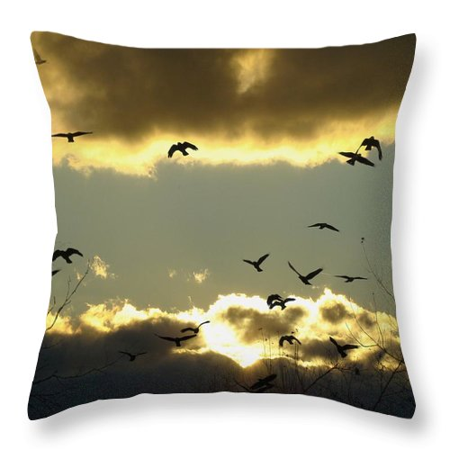 Clouds Throw Pillow featuring the photograph The Sky Opened by Gothicrow Images