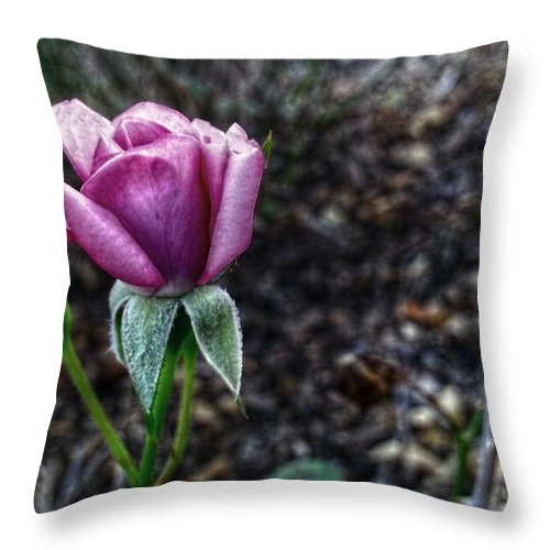 Flowers Throw Pillow featuring the digital art The Solitary One by Linda Unger