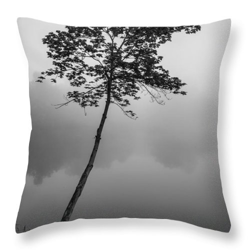Tree Throw Pillow featuring the photograph The Solitary Tree by Mark Robert Rogers