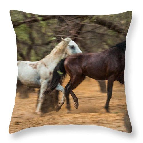 Wild Horse Art Throw Pillow featuring the photograph The Spirit by Ronald Hunt